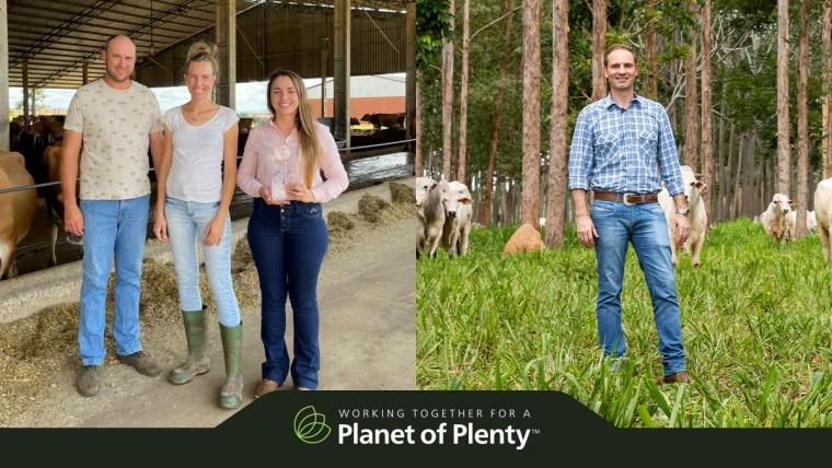 Ações sustentáveis no agronegócio brasileiro são reconhecidas em premiação global